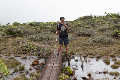 Ethan takes a phone break while traversing the world's highest swamp