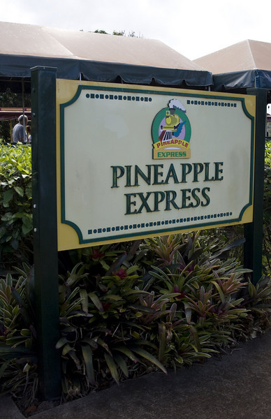 Dole Plantation, Wahiawa,HI. <br /> Image Copyright 2011 by DJB.  All Rights Reserved.