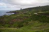 Maui Scenic_2015  034