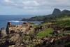 Maui Scenic_2015  044