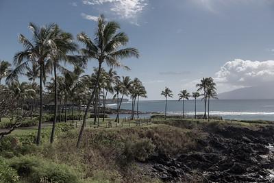 Hawaii: Maui (West Maui)