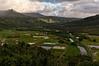 Taro Fields, Hanalei