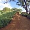 Koko Head Crater Trail