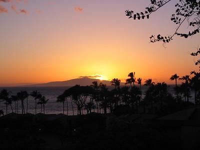 Maui 443