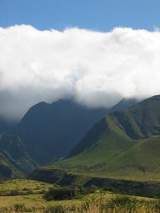 Maui 247