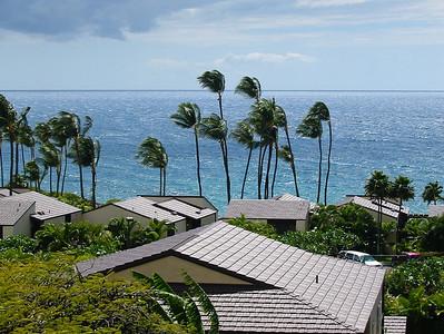 Maui 319