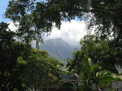 Maui 266