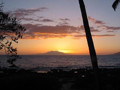 Maui 175