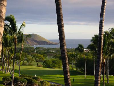 Maui 404