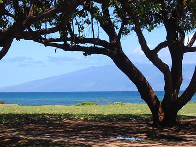 Maui 268