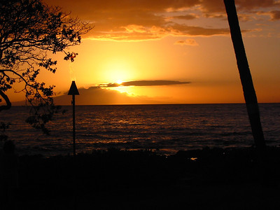 Maui 161