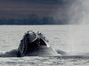 Maui 2013_Whales 143