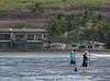 Maui 2013_Whales 093
