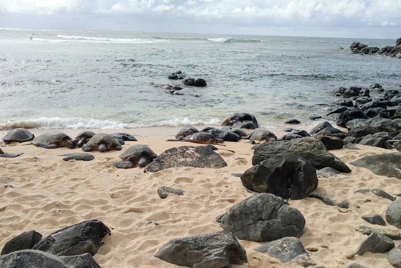 030-1400-Maui-DN