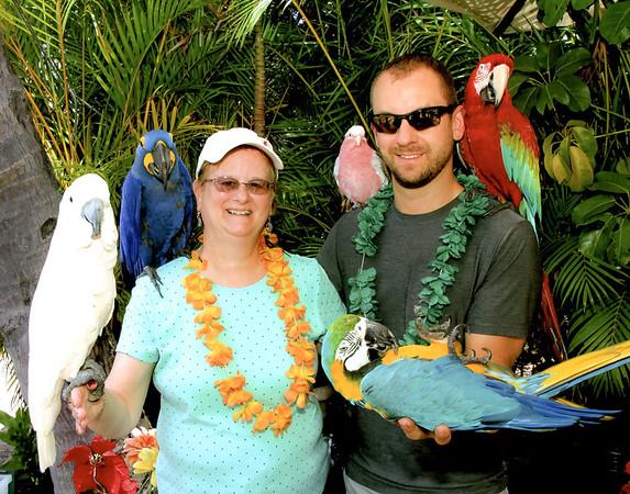 001-1000-Maui-Birds