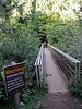 Along Pipiwai Trail