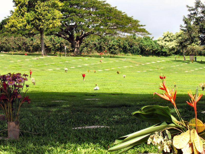 Hawaii_2_7_05 -04
