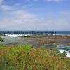 2015-10-04_5473_Shark Cove.JPG