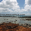 6335_Sharks Cove