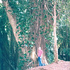 Randal at Huge Tree in This Rainforest - Manoa Falls - Honolulu, O'ahu, Hawaii - April 23-29, 2003