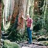Randal - Beautiful Moss Everywhere and Huge Trees - Manoa Falls - Honolulu, O'ahu, Hawaii - April 23-29, 2003