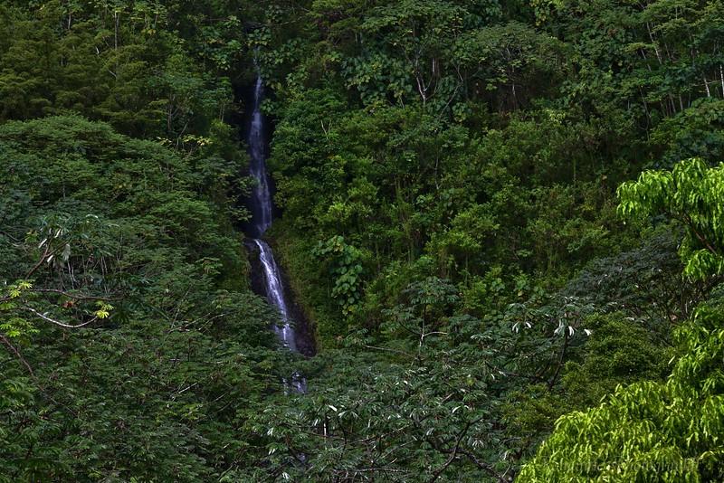 Beautiful Aihualama Falls as seen from the trail below.