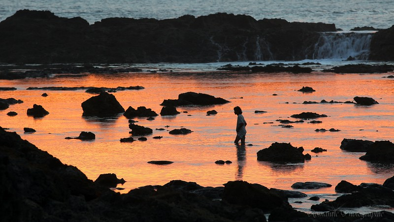 A man explores the pool that is Shark Cove.