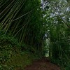 The path to the Aihualama Falls.