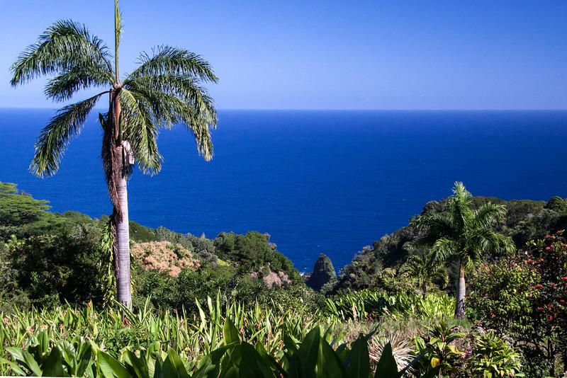 Maui 7914