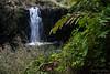 Waterfall 6578