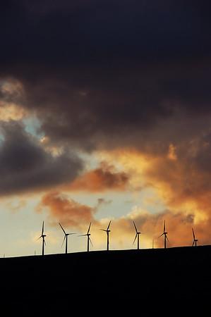 Wind mill in Maui