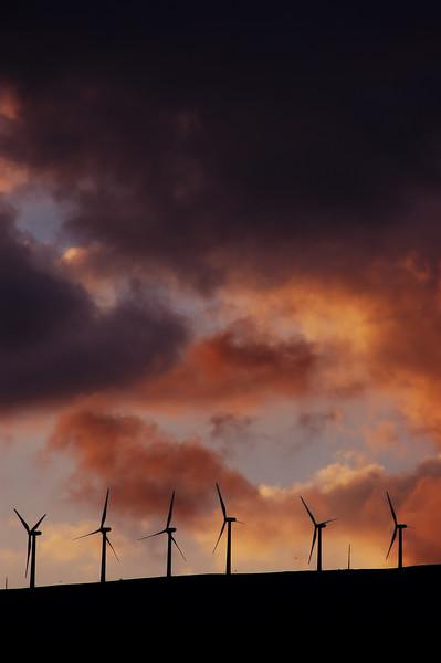 Wind mills in Maui