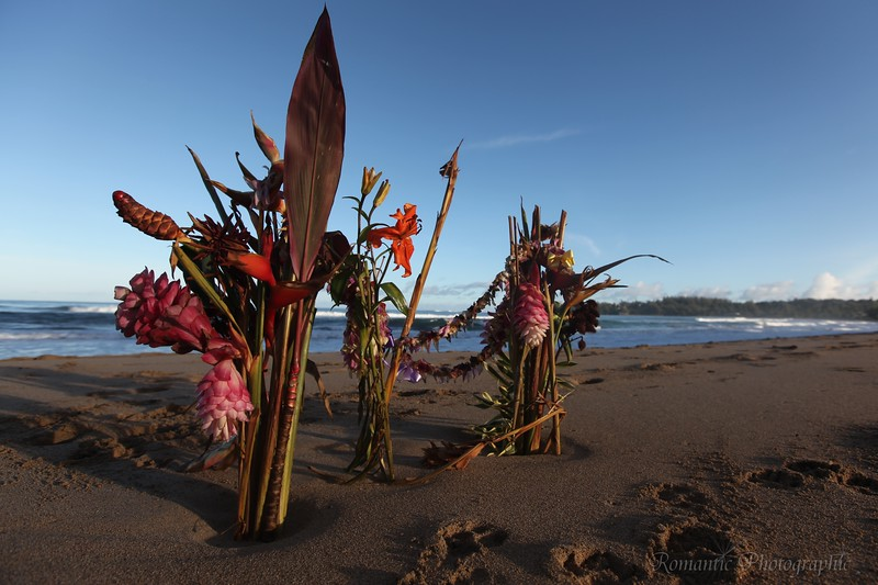 The beach at Hanalei has numerous floral tributes to recently deceased, Alan Irons