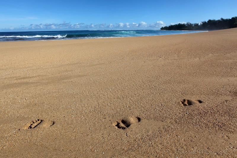 Beautiful Haena beach.