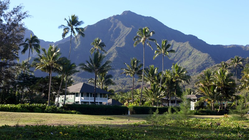 The view from Hanalei bay.