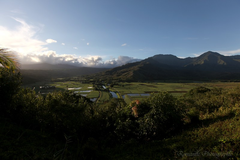 Looking inland on Kauai.