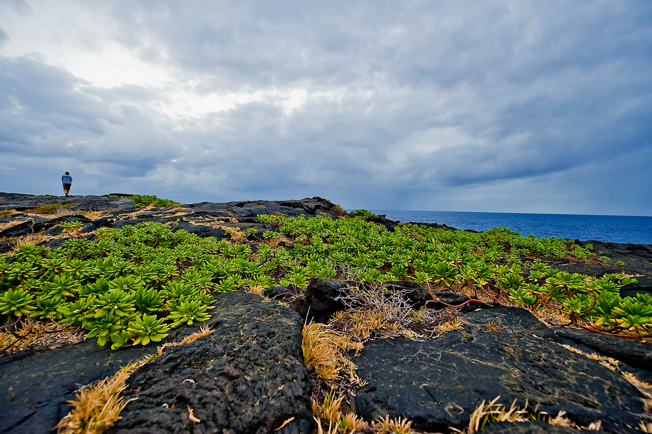 One of my FAVORITE pics from Hawai'i!