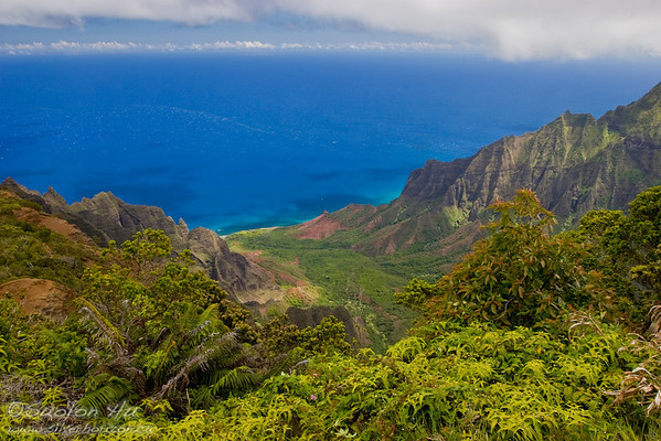 Kalalau Valley Overlook - at 4,120 feet elevation.