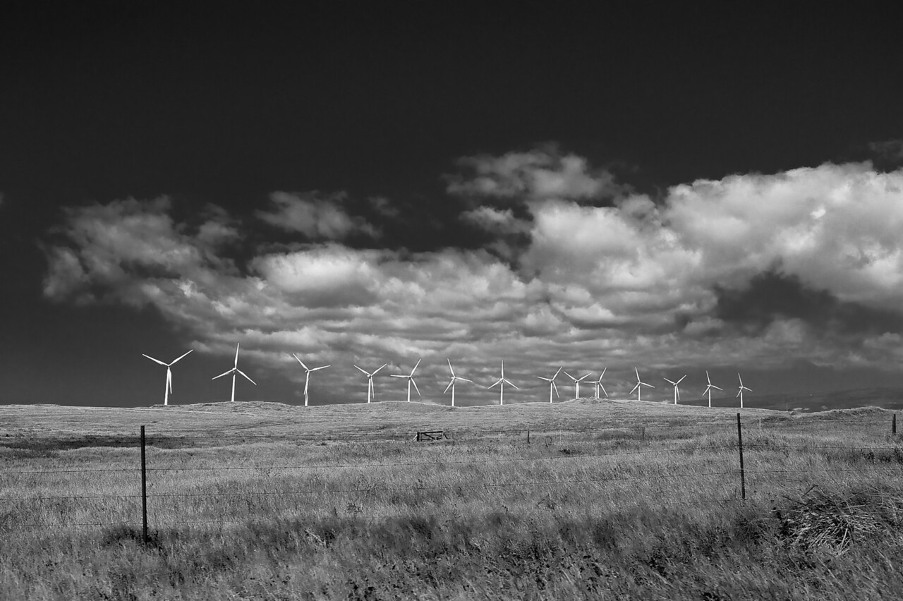 Wind turbines at South Point wind farm