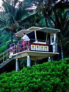 2011 Hawaii 264