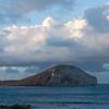 Hawaii-Oahu-6884