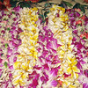 All the lei's we got in Honolulu.