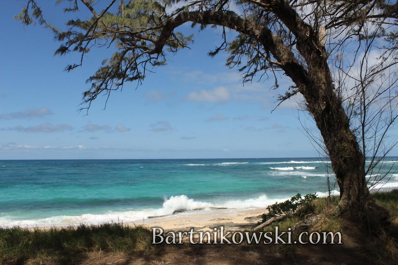 Oahu, Turtle Bay Resort, best, beach, Hawaii, islands, Hawaiian