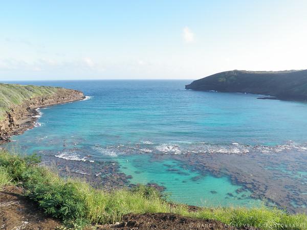 2011 Hawaii 269