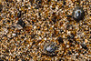 """Glass Beach"" on Kauai's southwest shore."
