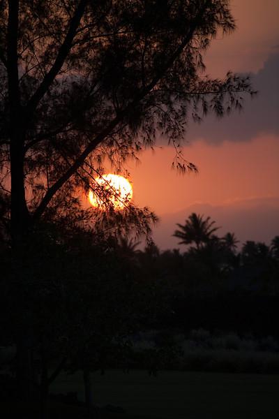 Hawaii-9851