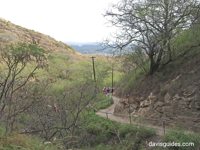 trail to summit of Diamondhead