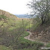trail to summit of Diamondhead
