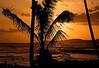 Hawaii Vacation 2007