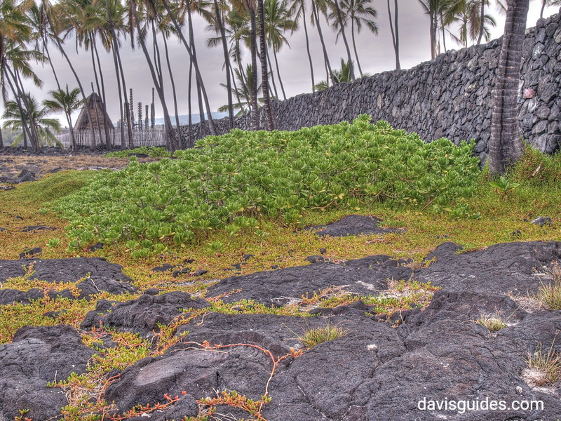 Pu'Uhonua O Honaunau National Historical Park, Big Island